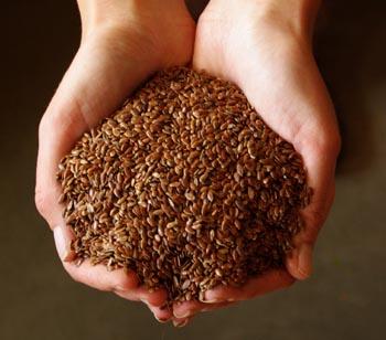 Flax, Brown (Linum usitatissimum), organic