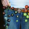 Tomato, Indigo Rose (Lycopersicon esculentum), packet of 30 seeds, organic