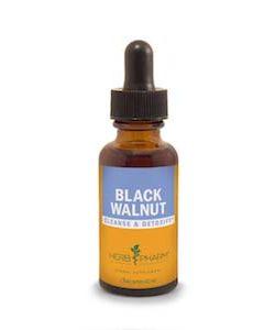 Black Walnut Extract