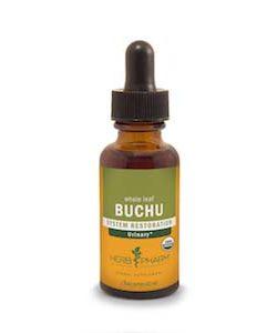 Buchu Extract