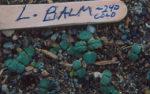 Lemon Balm (Melissa officinalis), packet of 100 seeds, organic