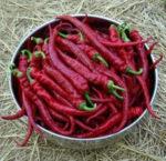 Pepper_Aji_sivn_bowl_300